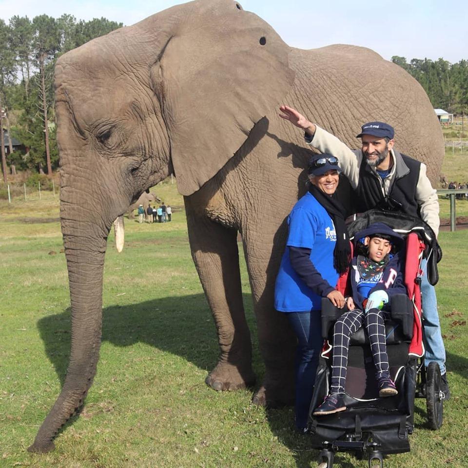 Knysna-Elephant-Park-2